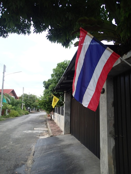 The Thai flag and the King's yellow flag
