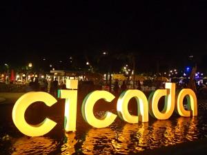 Cicada market!